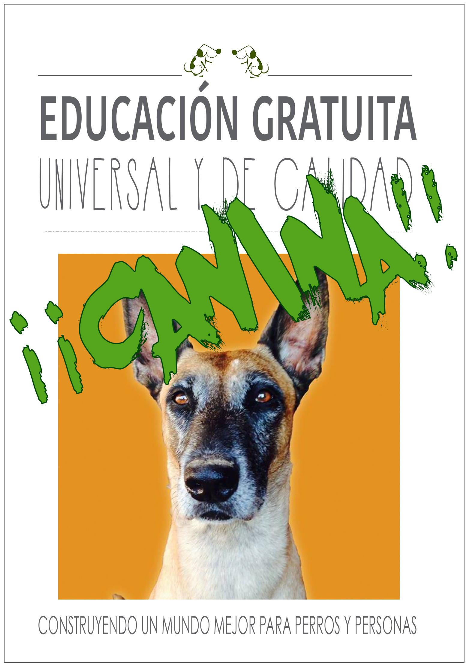 """<span style=""""color: #339966;"""">Convierte -GRATIS-las visitas a la clínica veterinariaen lamejor parte del día de tu perro:MI AMIGO EL VETERINARIO</span>"""