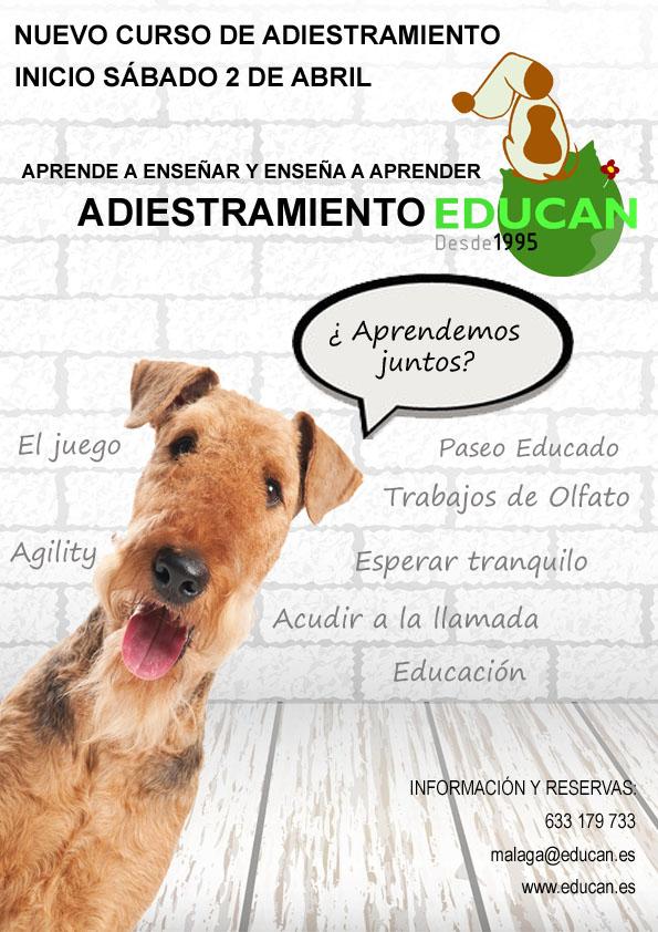 Adiestramiento en Grupo en Málaga | 2 de abril de 2016