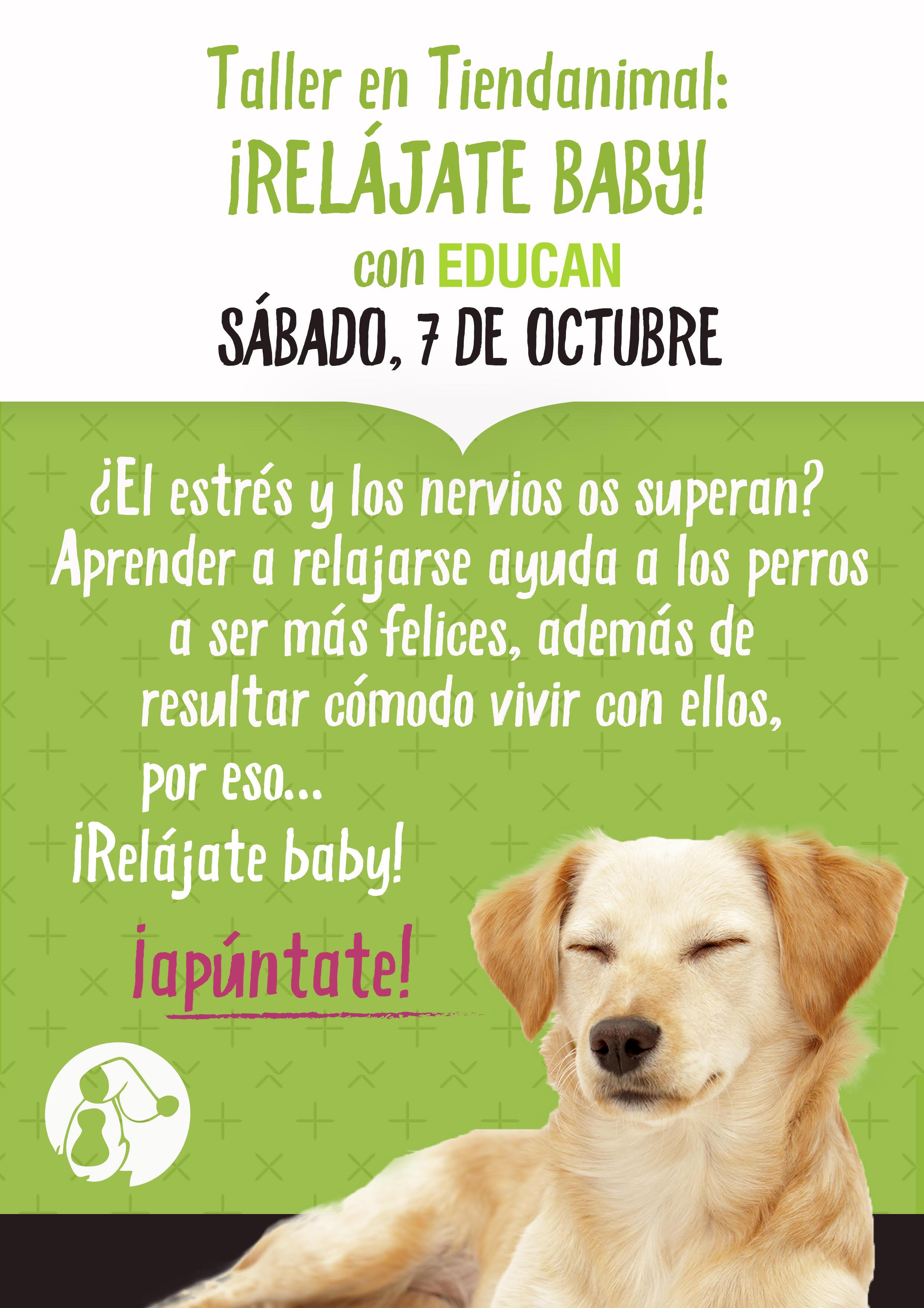 Elimina el estrés de tu perro y aprende a relajarte con él, GRATIS, en Tiendanimal