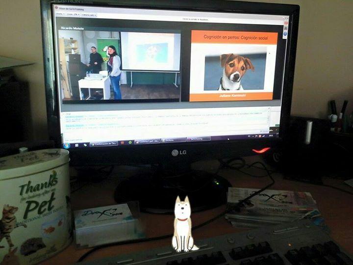 El aula virtual de uno de nuestros alumnos, retransmisión de lo que sucede y presentación con el material didáctico que se imparte. Sin fronteras :-) :-)