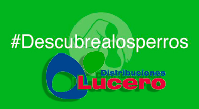 Distribuciones LUCERO nos patrocina: investiga y llévate regalos y descuentos :-)