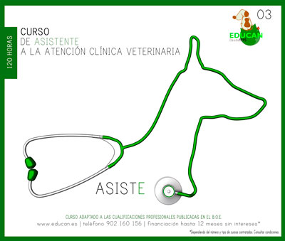 Curso de Asistente a la Atención Clínica Veterinaria [ATV]