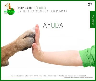 Curso de Técnico en Terapia Asistida por Perros