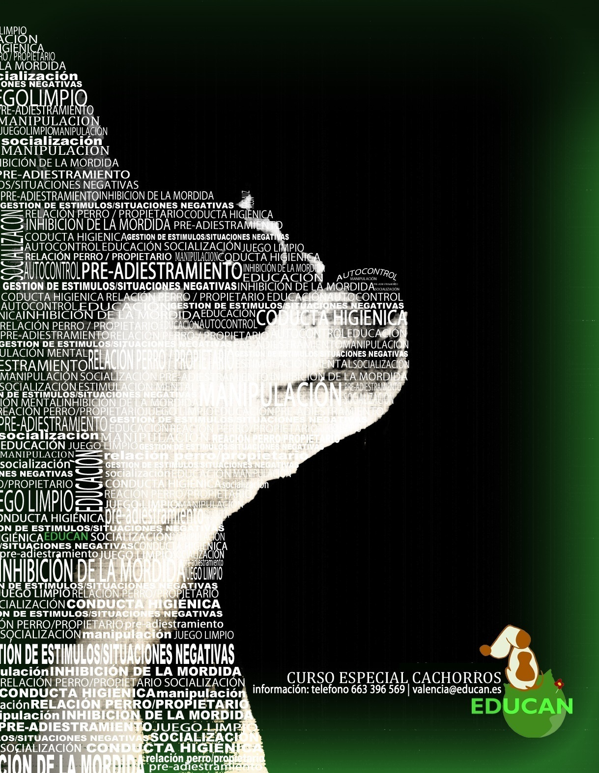 Curso para Cachorros |Valencia 27 oct 2015.