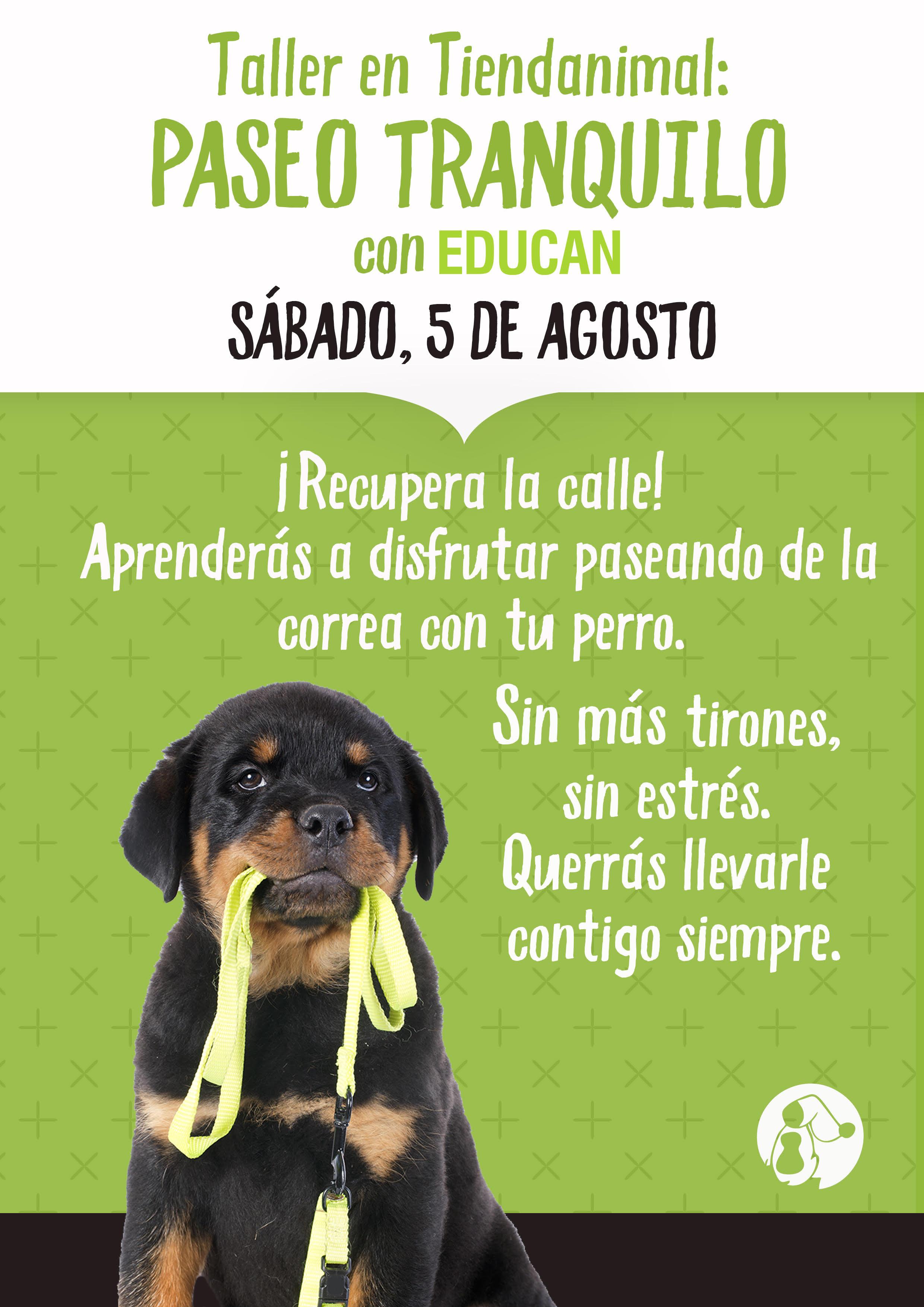 Aprende a PASEAR TRANQUILO con tu perro ¡GRATIS! en Tiendanimal